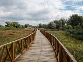 Wooden walk bridge in nature park Kopacki rit