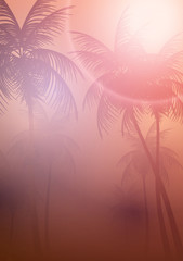 Tropical Sunset with Palm Trees - Vector Illustration.