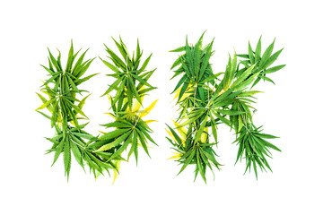 Word UK made from green cannabis leaves on a white background. Isolated