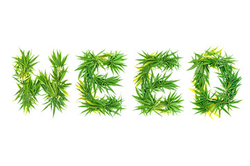 Word WEED made from green cannabis leaves on a white background. Isolated
