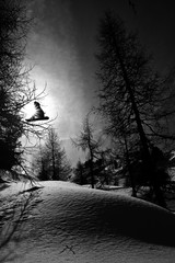 Snowboarding in the forest