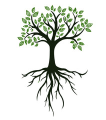 Tree symbol with roots, real hand drawing. Vector Illustration
