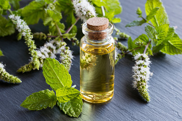 A bottle of peppermint essential oil with blooming peppermint twigs