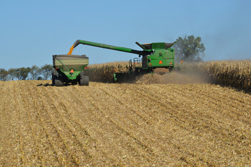 Combine harvesting corn and unloading to trailer