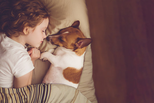Sweet curly girl and jack russell dog is sleeping in night.