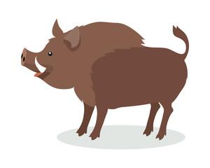 Wild Boar Cartoon Flat Vector Illustration