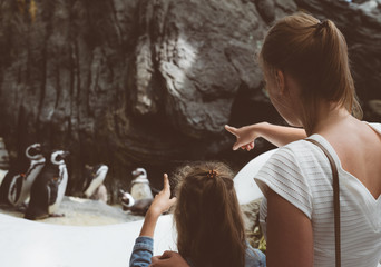 Woman and her daughter looking at penguins in the zoo.