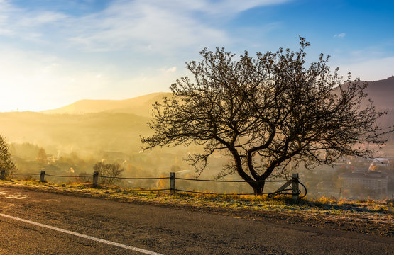 road through mountainous countryside at sunrise. beautiful foggy autumn scenery