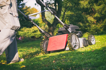 Mowing the grass with a lawn mower in early autumn, mulching the lawn with a mower