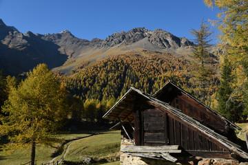 Cerca immagini baita di montagna for Rifugio in baita di montagna