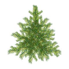 Fir-tree, Christmas tree, vector