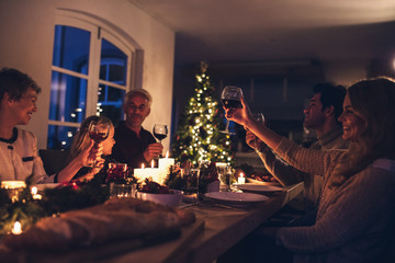 Extended family toasting wine at christmas dinner