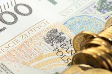 Polish Zloty, close-up