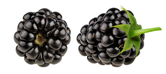 Blackberry isolated on white background clipping path