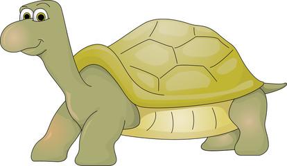Tortuga gigante de galápagos dibujo caricatura personaje