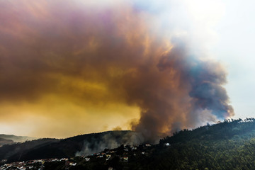 Forest fire near Coimbra, Portugal