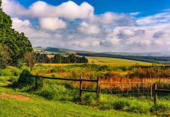 Color outdoor scenic panoramic landscape photography of a rural landscape, fields, meadow, taken in Drakensberge, South Africa on a sunny day, blue sky, clouds, in vintage painting style