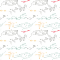 Eucalyptus leaves and berries vector seamless pattern.