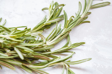 Fresh rosemary on a light background
