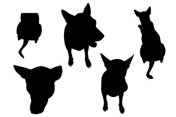 Dog set silhouette and clipping path included to remove the background with ease. - action illustration.