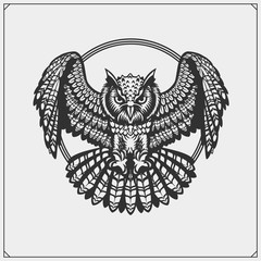 The emblem with owl with open wings.