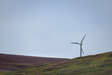 One windmill in green and purple heather landscape and blue sky