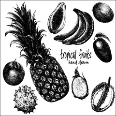 Hand drawn sketch set of tropical fruits. Vector illustration isolated on white background.