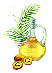 Palm oil composition. Hand drawn watercolor illustration