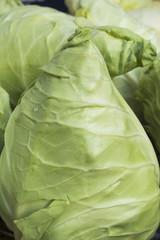 Caraflex Cabbage Close-up