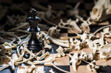 A chess unit king in plenty bones