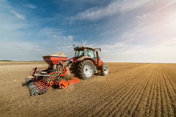 Tractor plowing fields -preparing land for sowing in autumn