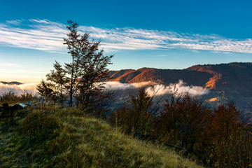 foggy sunrise in mountainous countryside. beautiful autumn scenery with trees, fences and red foliage on a hill in glowing fog under the blue sky