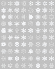 Set of different white snowflakes on a gray background
