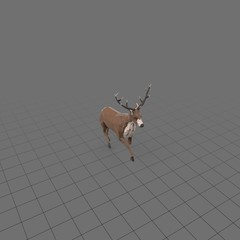 Stylized stag running