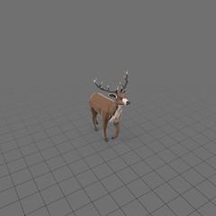 Stylized stag walking
