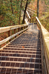 Outdoor Wooden Stairs Leading Downwards Through a Canyon