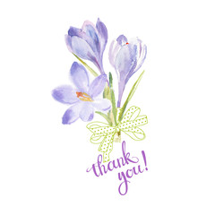 Thank you! Watercolor illustration with  crocuses and handmade calligraphy on white background.