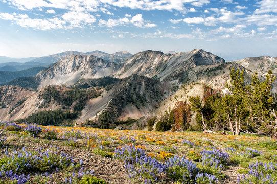 Smokey Mountains Idaho