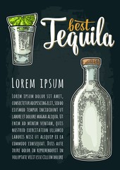 Vertical poster with glass and bottle tequila. Engraving