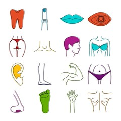 Body parts icons doodle set