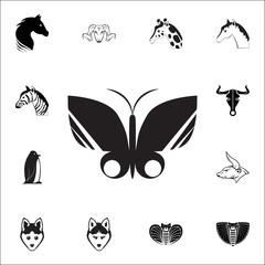 butterfly icon. Set of animal icons. You can use in web or app icons