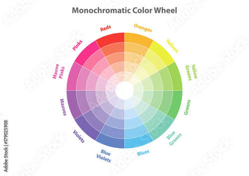 Monochromatic Color Wheel Scheme Theory Vector Isolated