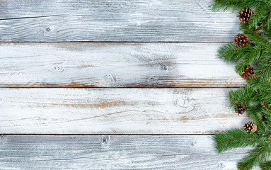 Christmas evergreen branches on rustic knotty white wooden background
