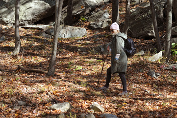 Hiker walking in autumn forest in the mountains. Hiking and traveling
