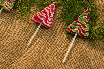 Close up of mint candies with pine twigs