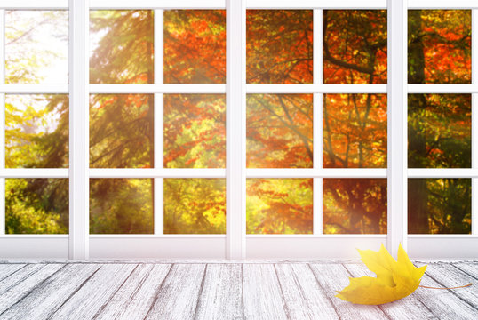 Room interior with window frame and yellow maple leaf lying on wooden table in Shabby Chic style. Autumn sunny day with autumnal trees outside.