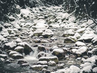 Winter Snow Covered Forest RIver with Shallow Focus Blur Background