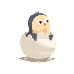 Adorable newborn penguin hatching from egg