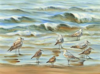 sea birds watercolor background