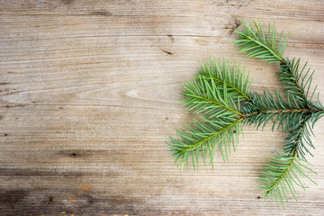 Spruce branches on a wooden table